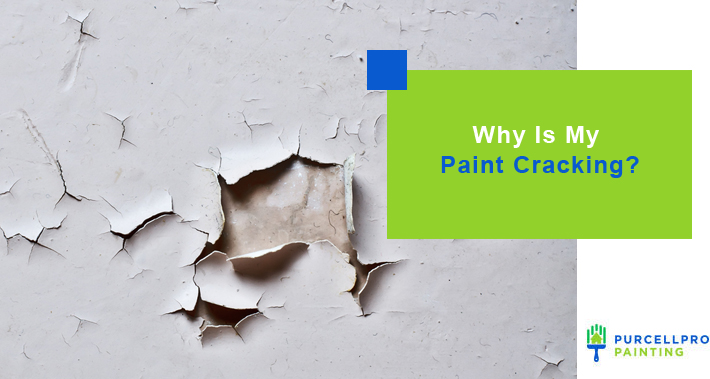 Why Is My Paint Cracking? | Purcellpro Painting | Willow Grove PA Painter Services